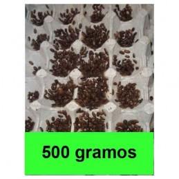 500gramos microblapticas